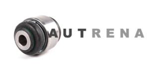 Profesionalus autodalių ir sarnyrų restauravimas
